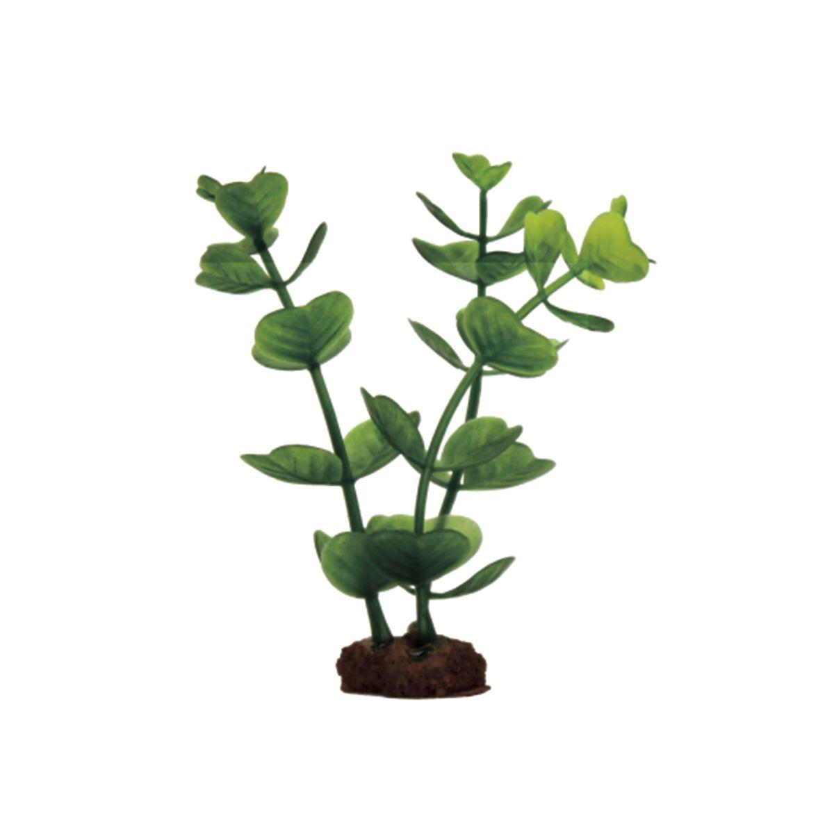 Растение для аквариума ArtUniq Бакопа, высота 10 см, 6 штART-1170504Растение для аквариума ArtUniq Бакопа, высота 10 см, 6 шт