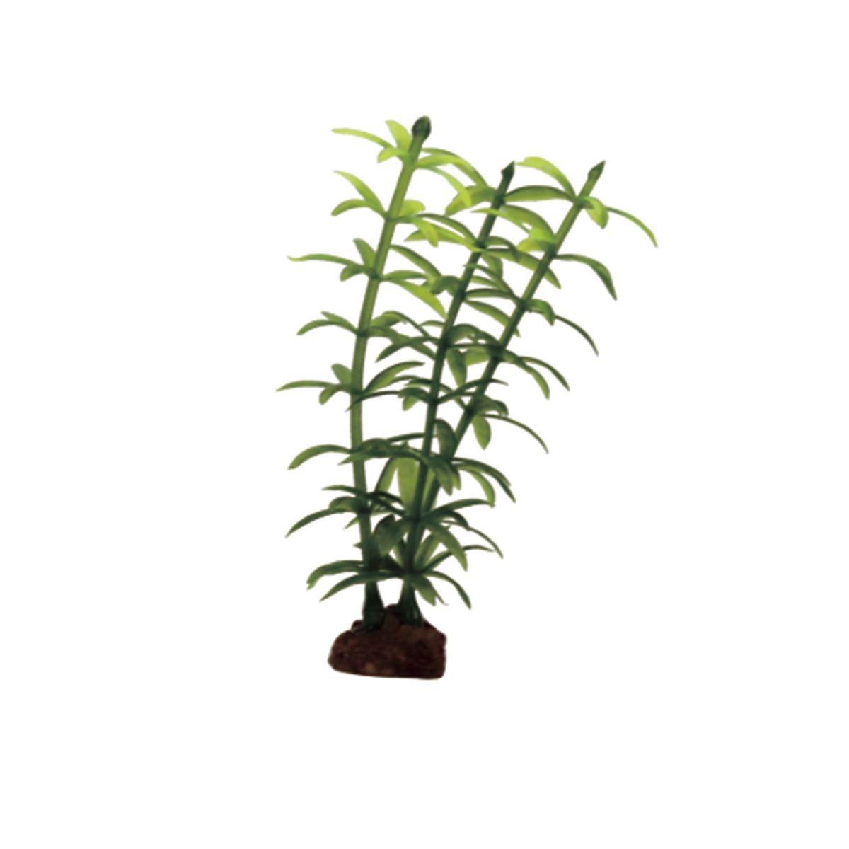 Растение для аквариума ArtUniq Элодея, высота 10 см, 6 штART-1170510Растение для аквариума ArtUniq Элодея, высота 10 см, 6 шт