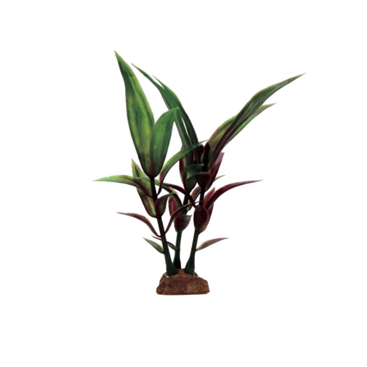 Растение для аквариума ArtUniq Гигрофила сиамская красная, высота 10 см, 6 штART-1170515Растение для аквариума ArtUniq Гигрофила сиамская красная, высота 10 см, 6 шт