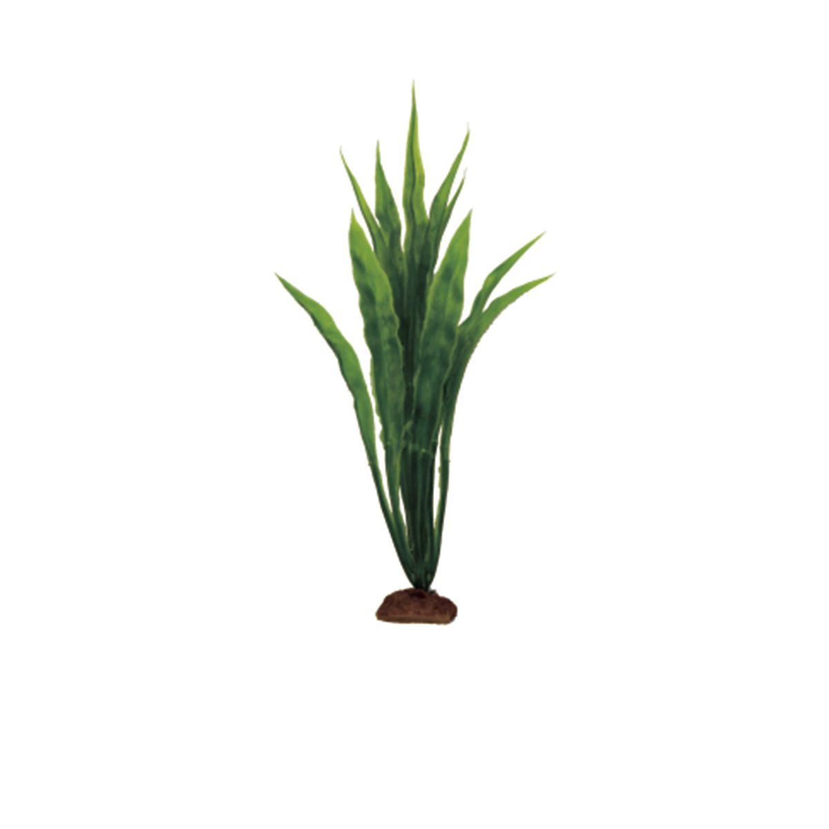 Растение для аквариума ArtUniq Эхинодорус боливийский, высота 12 см, 6 шт0120710Растение для аквариума ArtUniq Эхинодорус боливийский, высота 12 см, 6 шт