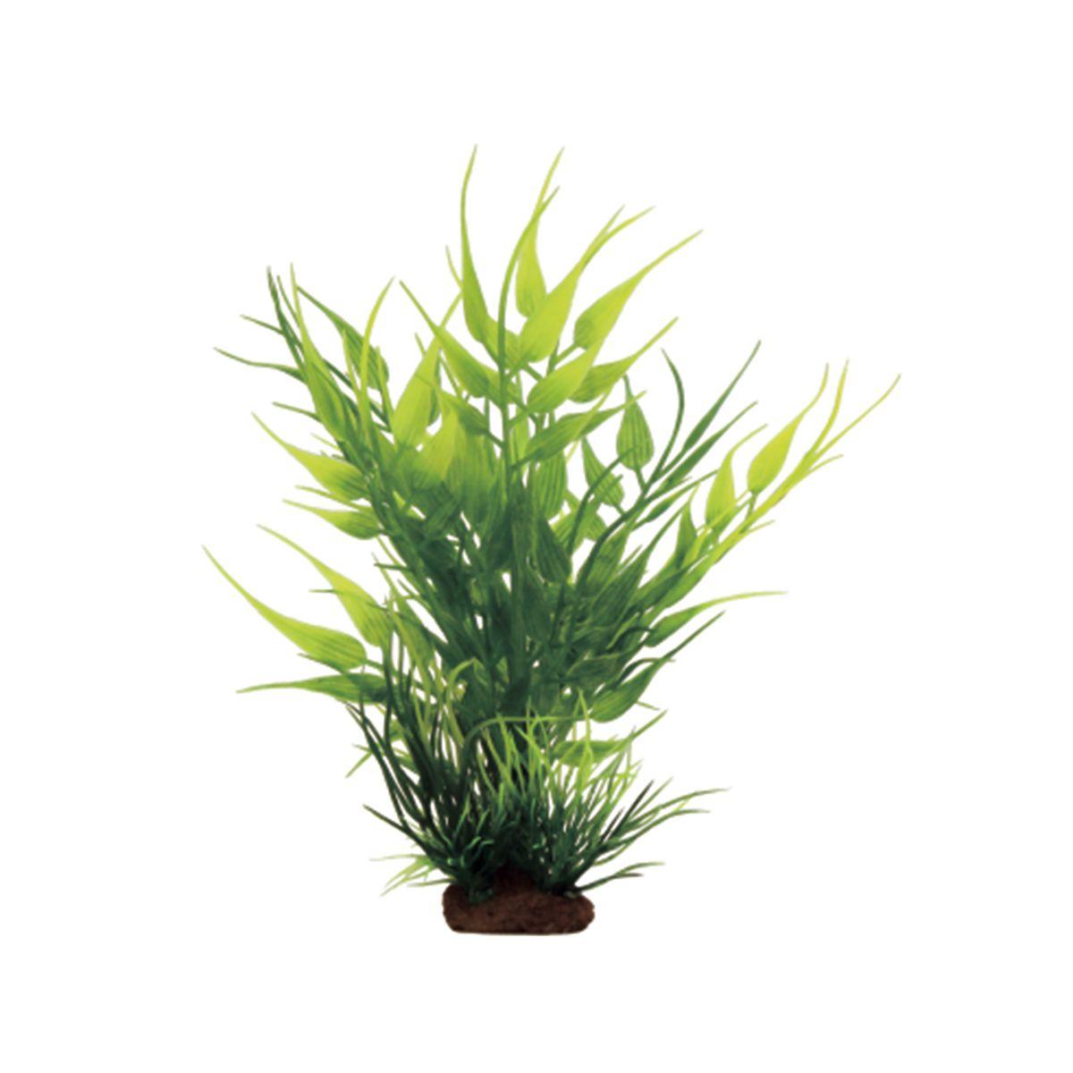 Растение для аквариума ArtUniq Бамбук, высота 10 см, 6 штART-1170531Растение для аквариума ArtUniq Бамбук, высота 10 см, 6 шт