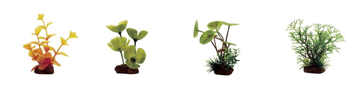 Растение для аквариума ArtUniq Лизимахия оранжевая, марсилия, щитолистник, перистолистник, высота 7-10 см, 4 штART-1170609Растение для аквариума ArtUniq Лизимахия оранжевая, марсилия, щитолистник, перистолистник, высота 7-10 см, 4 шт