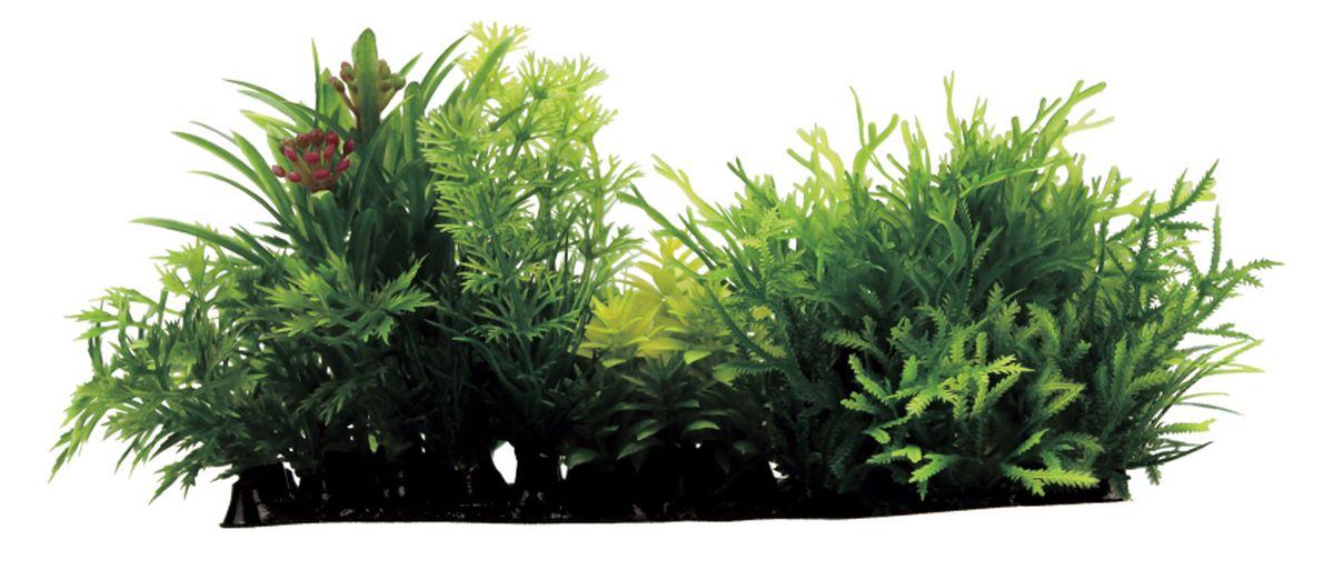 Композиция из растений для аквариума ArtUniq Мох, 15 x 7 x 9 смART-1180106Композиция из растений для аквариума ArtUniq Мох, 15 x 7 x 9 см