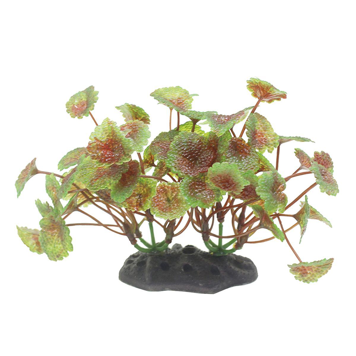 Растение для аквариума ArtUniq Щитолистник красно-зеленый, высота 10-12 смART-1192105Растение для аквариума ArtUniq Щитолистник красно-зеленый, высота 10-12 см