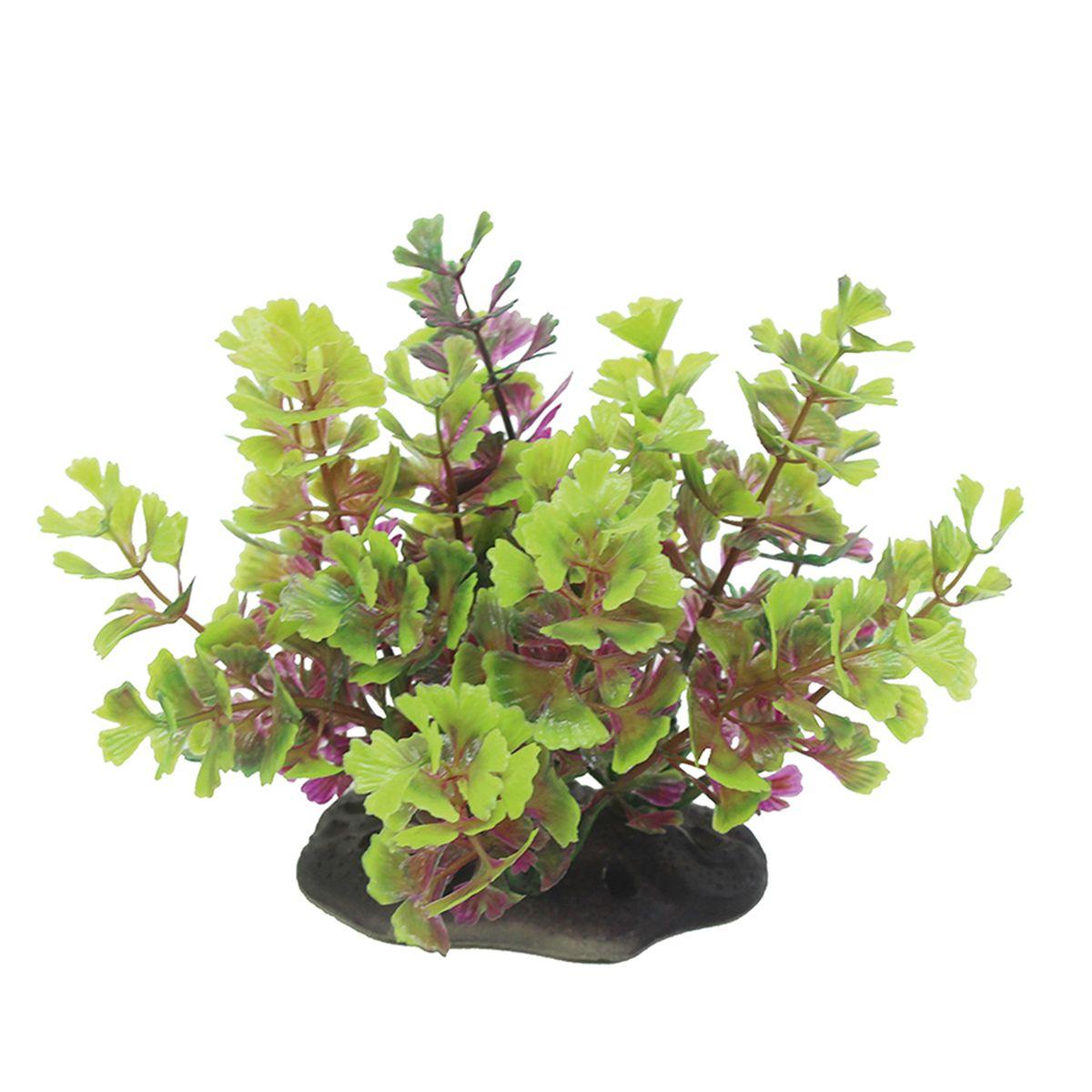 Растение для аквариума ArtUniq Кариота красно-зеленая, высота 10-12 смART-1192108Растение для аквариума ArtUniq Кариота красно-зеленая, высота 10-12 см