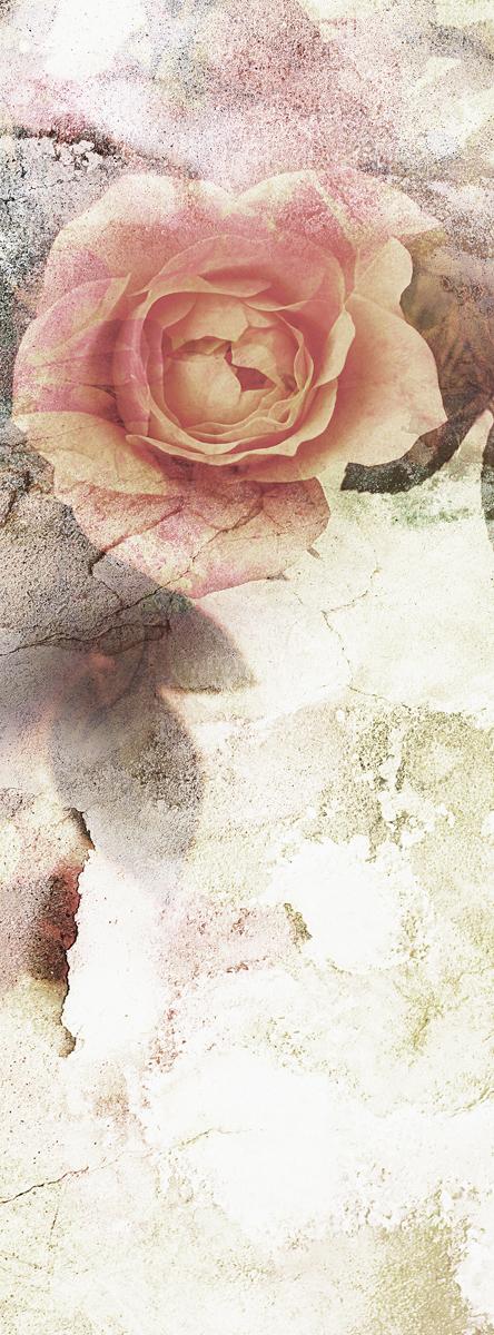 Фотообои Barton Wallpapers Цветы, 100 x 270 см. F11301F11301Флизелиновые фотообои Barton Wallpapers Цветы. Превосходное цифровое качество изображения, экологичные, износостойкие, не пахнут, стойки к выцветанию, просты в поклейке. Каждому человеку хочется внести индивидуальности в свой интерьер и сделать его уютней. Английские обои Barton Wallpapers сделают это лучше всего!