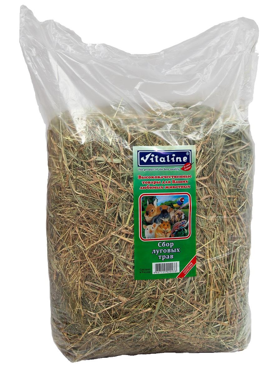 Сено для грызунов Vitaline, сбор луговых трав, 3 кг0120710Сено для грызунов - 100% натуральный продукт. Изготовлен из специально выращенных луговых трав в экологически чистых районах средней полосы России. Высокое качество данной продукции достигается с помощью нескольких стадий обработки сырья на специальном оборудовании.Гигиенический сертификат на упаковочный материал 77.01.04.229.П.06967.04.4 от 01.01.04.Хранение продукции:Хранить при температуре 20 градусов по Цельсию и относительной влажности не более 80%.Хранить в сухом месте.Срок годности не менее 3 лет (не ограничен).