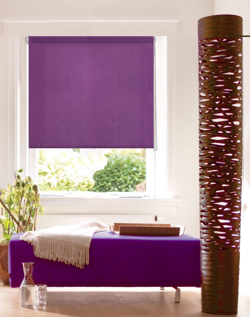 Штора рулонная Эскар Миниролло. Рояль, цвет: фиолетовый, ширина 68 см, высота 160 см10503Рулонными шторами можно оформлять окна как самостоятельно, так и использовать в комбинации с портьерами. Это поможет предотвратить выгорание дорогой ткани на солнце и соединит функционал рулонных с красотой навесных. Для изготовления рулонных штор используются ткани с различными рисунками и фактурой. Благодаря этому среди моделей рулонных штор для балконов и лоджий довольно большой выбор и вы всегда сможете подобрать для себя оптимальный вариант.Преимущества применения рулонных штор для пластиковых окон: - имеют прекрасный внешний вид: многообразие и фактурность материала изделия отлично смотрятся в любом интерьере;- многофункциональны: есть возможность подобрать шторы способные эффективно защитить комнату от солнца, при этом она не будет слишком темной. - Есть возможность осуществить быстрый монтаж.ВНИМАНИЕ! Размеры ширины изделия указаны по ширине ткани! Для выбора правильного размера необходимо учитывать – ткань должна закрывать оконное стекло на 3 см. Однотонная палитра - будет идеально гармонировать в любом интерьере, сочетаться с обоями, мебелью и другими функциональными или стилевыми элементами.