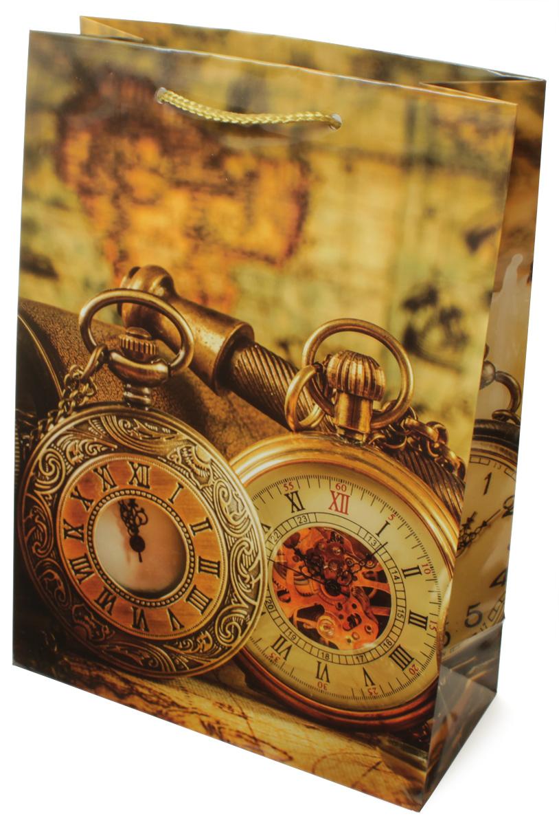 Пакет подарочный МегаМАГ Часы, 22 х 31 х 10 см. H2. 7062 ML7062 MLПакет подарочный ламинированный. Ручки-шнурки. Размер:220*310*100 мм .