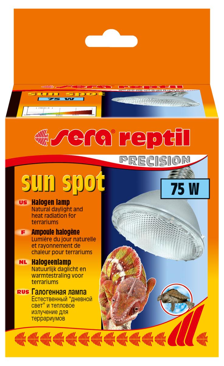 Лампа для террариума галогенная Sera Sun Spot, 75 Вт0120710Галогенная лампа-обогреватель для террариума Sera Sun Spot с солнечным спектром генерирует одновременно тепло и свет. Создает световое пятно, подходит для небольших и средних террариумов, работает без балластного дросселя, под патрон E27. Рептилии ассоциируют тепло со светом и целенаправленно направляются к источнику света, чтобы принять солнечные ванны. С помощью таких солнечных ванн рептилия обеспечивает себе естественную регуляцию тепла. Полный спектр лампы, аналогичный солнечному спектру, стимулирует естественное поведение и обеспечивает хорошую цветопередачу.