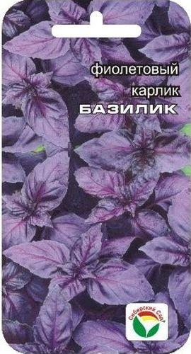 Семена Сибирский сад Базилик. Карлик фиолетовый, 0,5 гBP-00000177Травянистое однолетнее растение, обладающее как пряно-ароматическими, так и лекарственными свойствами. Растение темно-фиолетового цвета, достигает в высоту 30-35 см, имеет великолепный вкус с оттенком запаха душистого перца. Растение великолепно отрастает после срезки. Обладает дезинфицирующим и мочегонным действием, снимает спазмы желудка и способствует укреплению нервной системы, обладает великолепным тонизирующим действием и способствует лучшему перевариванию жиров. Базилик предпочитает легкие плодородные почвы, не переносит переувлажнение и затенение. Сбор урожая производят до и во время цветения. Используют в свежем и сушеном виде для приготовления различных блюд, соусов, а также для ароматизации уксуса и других напитков. Выращивается как через рассаду, так и посевом в грунт. Для ускорения процесса всхожести семян, оздоровления растений, улучшения завязываемости плодов рекомендуется пользоваться специально разработанными стимуляторами роста и...