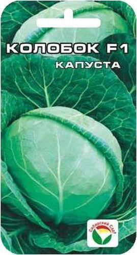 Семена Сибирский сад Капуста белокочанная. Колобок F1, 25 штBP-00000217Позднеспелый гибрид (техническая спелость наступает на 150-160 день после всходов). Формирует округлый кочан очень высокой плотности, массой 2-4,5 кг. Наружная окраска зеленая, а на разрезе бело-кремовая. Для гибрида характерна высокая урожайность, дружное созревание, высокая транспортабельность и лежкость (прекрасно хранится в течение 6-7 месяцев). Гибрид устойчив к комплексу болезней и растрескиванию. Районирован повсеместно. Рекомендован для потребления в свежем виде, квашения и длительного хранения. Урожайность- 6.0- 7 кг с 1 м2. Посев на рассаду в апреле. Высадка в грунт через 35-40 дней, в фазе 4-5 настоящих листьев- по схеме 60x60 см. Уход заключается в регулярных прополках, рыхлении, обильном поливе и подкормках. Для ускорения процесса всхожести семян, оздоровления растений, улучшения завязываемости плодов рекомендуется пользоваться специально разработанными стимуляторами роста и развития растений.