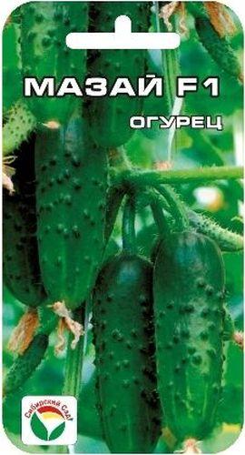 Семена Сибирский сад Огурец. Мазай F119201Партенокарпический гибрид. Женского типа цветения. Для открытого и защищенного грунта. Раннеспелый. Зеленец цилиндрической формы, мелкобугорчатый, без горечи, длиной 10-14 см. Вкусовые качества отличные. Обладает комплексной устойчивостью к заболеваниям: мучнистой росе, вирусу огуречной мозаики, относительно устойчив к возбудителям ложной мучнистой росы и корневым гнилям. Пригоден для засола и консервирования, для употребления в свежем виде.