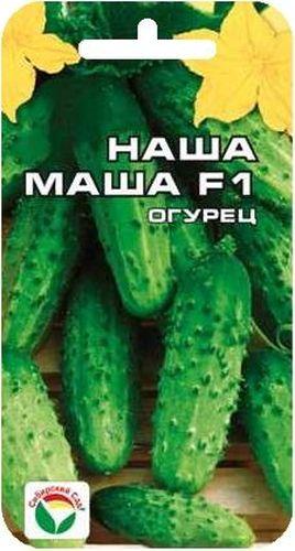 Семена Сибирский сад Огурец. Наша Маша, 7 штBP-00000308Гибрид раннеспелый, партенокарпический, с женским типом цветения. От всходов до начала плодоношения проходит 38-42 дня. Растение среднерослое 1,5- 2 м. Плод среднебугорчатый, цилиндрический, длиной 8-10 см, с черным простым опушением, генетически без горечи. Пасынков гибрид образует не много. Вкус свежих, консервированных и соленых плодов отменный. Рекомендуется для выращивания в открытом грунте и пленочных теплицах. Урожайность 15-18 кг с 1 м2. Посев на глубину 1,5-2 см. Оптимальная температура почвы для прорастания семян 23-25°С. Плотность посадки - три растения на 1 м2. Растение укрывают пленкой, подвязывают к шпалере. Полив и подкормка органическими минеральными удобрениями в процессе вегетации. Сбор урожая через каждые 3-5 дней. Для ускорения процесса всхожести семян, оздоровления растений, улучшения завязываемости плодов рекомендуется пользоваться специально разработанными стимуляторами роста и развития растений.