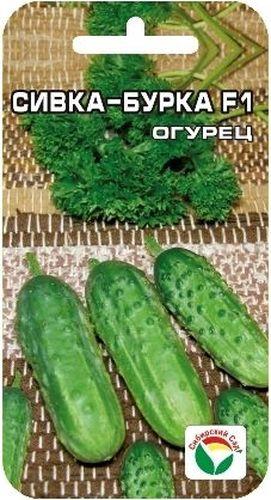 Семена Сибирский сад Огурец. Сивка-Бурка F1BP-00000317Раннеспелый (43-45 дней) партенокарпик, зеленцы длиной 9-11см, черношипые. Идеально подходят для засолки.