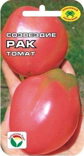 Семена Сибирский сад Томат. Рак19201Среднеранний розовоплодный сорт. Растение индетерминантное, высотой более 1,2м., формирует до 6 кистей с 4-6 крупными плодами оригинальной удлиненно-грушевидной формы массой 200-300гр. Томаты гладкие, глянцевые, интенсивно-розового цвета с жемчужным муаром, очень вкусные.