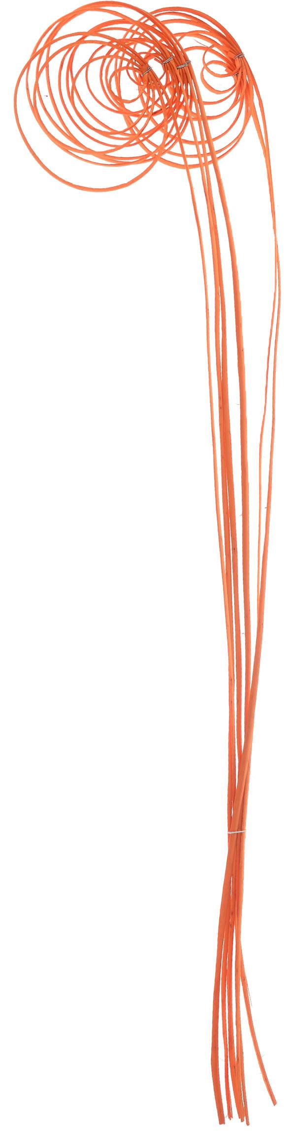 Украшение декоративное Lovemark Завиток. Спираль, цвет: оранжевый, 6 шт6060_оранжевыйУкрашение декоративное Lovemark Завиток. Спираль - великолепный подарок себе и вашим близким. Этот очаровательный предмет интерьера будет приковывать взгляды ваших гостей. Изделия из соломки несут в себе энергию солнечных лучей. Несмотря на свой хрупкий вид, солома - прочный и долговечный материал, а значит не помнется и не поломается со временем. Рекомендации по уходу: изделие должно находиться в сухом помещении.