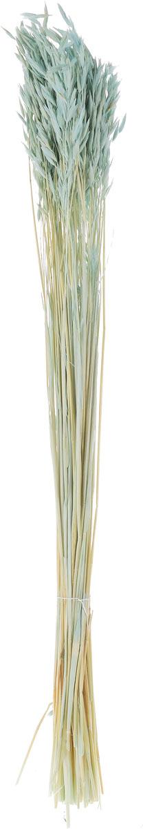 Украшение декоративное Lovemark Пучок овса, цвет: голубой, длина 70 см6028_голубойУкрашение декоративное Lovemark Пучок овса - великолепный подарок себе и вашим близким. Этот очаровательный предмет интерьера будет приковывать взгляды ваших гостей. Изделия из соломы несут в себе энергию солнечных лучей. Несмотря на свой хрупкий вид, cолома - прочный и долговечный материал, а значит не помнется и не поломается со временем. Рекомендации по уходу: изделие должно находиться в сухом помещении.
