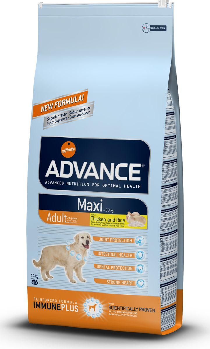 Корму сухой Advance для взрослых собак крупных пород Maxi Adult, 14 кг. 5003160120710Advance – высококачественный корм супер-премиум класса Испанской компании Affinity Petcare, которая занимает лидирующие места на Европейском и мировом рынках. Корм разработан с учетом всех особенностей развития и жизнедеятельности собак и кошек. В линейке кормов Advance любой хозяин может подобрать необходимое питание в соответствии с возрастом и уникальными особенностями своего животного, а также в случае назначения специалистами ветеринарной диеты. Курица (16%), дегидрированное мясо курицы, рис (15%), пшеница, маисовый глютен, маис, животный жир, гидролизированный белок животного происхождения, свекольный жом,яичный порошок, дрожжи, рыбий жир, хлористый калий, плазменный протеинs, пирофосфорнокислый натрий, глюкозамин, хондроитинсульфат, природные полифенолы.Affinity Petcare имеет собственную лабораторию, а также сотрудничает со множеством международных исследовательских центров, благодаря чему специалисты постоянно совершенствуют рецептуру и полезные свойства своих кормов.В составе главным источником белка является СВЕЖЕЕ мясо, благодаря которому корм обладает высокими вкусовыми качествами, а также высокой питательной ценностью.