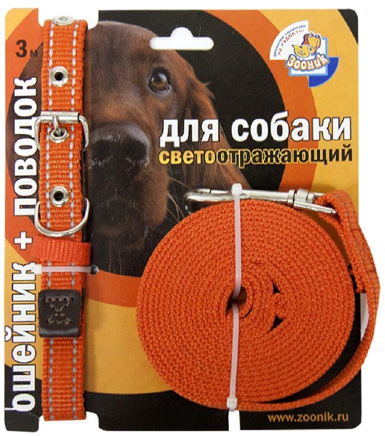 Комплект Зооник: поводок 3м, ошейник 37-51 см х 25 мм, со светоотражающей лентой, цвет: оранжевый1353-2Поводок Зооник, капроновый комплект для выгула собак со светоотражающей лентой (ошейник + поводок). Идеально подходит для прогулок в темное время суток. Длина поводка 3м. Ширина ленты 25мм. Цвет оранжевый.