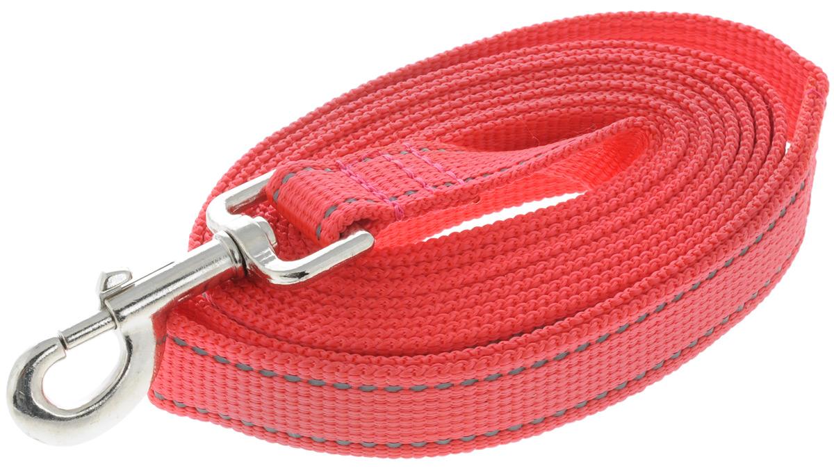 Поводок капроновый для собак Аркон, цвет: красный, ширина 2,5 см, длина 3 мпк3м25_красныйПоводок для собак Аркон изготовлен из высококачественного цветного капрона и снабжен металлическим карабином. Изделие отличается не только исключительной надежностью и удобством, но и привлекательным современным дизайном. Поводок - необходимый аксессуар для собаки. Ведь в опасных ситуациях именно он способен спасти жизнь вашему любимому питомцу. Иногда нужно ограничивать свободу своего четвероногого друга, чтобы защитить его или себя от неприятностей на прогулке. Длина поводка: 3 м. Ширина поводка: 2,5 см.