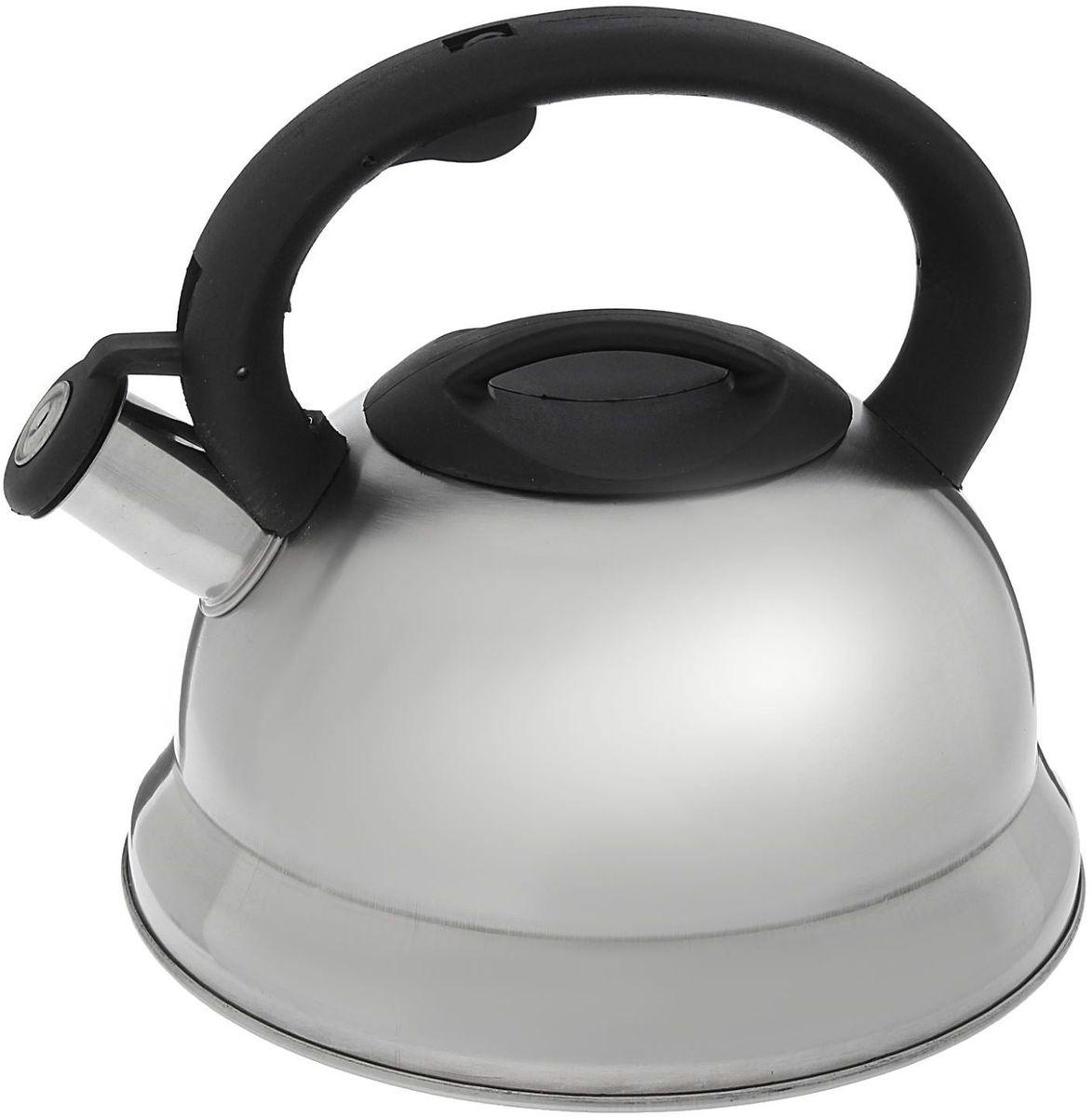 Чайник Доляна Рио, со свистком, цвет: серый, 2,8 л1405203Бытовая посуда из нержавеющей стали славится неприхотливостью в уходе и безукоризненной функциональностью. Коррозиестойкий сплав обеспечивает гигиеничность изделий. Чайники из этого материала абсолютно безопасны для здоровья человека. Чем привлекательна посуда из нержавейки? Чайник из нержавеющей стали станет удачной находкой для дома или ресторана: благодаря низкой теплопроводности модели вода дольше остается горячей; необычный дизайн радует глаз и поднимает настроение; качественное дно гарантирует быстрый нагрев. Как продлить срок службы? Ухаживать за новым приобретением элементарно просто, но стоит помнить о нескольких нехитрых правилах. Во-первых, не следует применять абразивные инструменты и сильнохлорированные моющие средства. Во-вторых, не оставляйте пустую посуду на плите. В-третьих, если вы уезжаете из дома на длительное время - выливайте воду из чайника. Если на внутренней поверхности изделия появились пятна, используйте для их удаления несколько капель уксусной или лимонной...