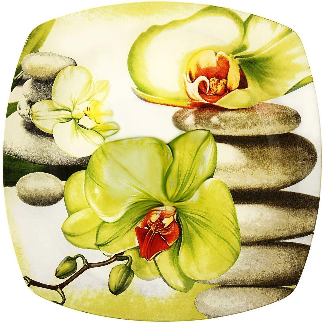 Тарелка десертная Доляна Зеленая орхидея, диаметр 20 см230519Столовая посуда с природными мотивами в оформлении разнообразит интерьер кухни и сделает застолье самобытным и запоминающимся. Достоинства: качественное стекло не впитывает запахов; гладкая поверхность обеспечивает лёгкость мытья; яркий дизайн порадует ценителей стиля фолк. Рекомендуется избегать использования абразивных моющих средств. Делайте любимый дом уютнее!