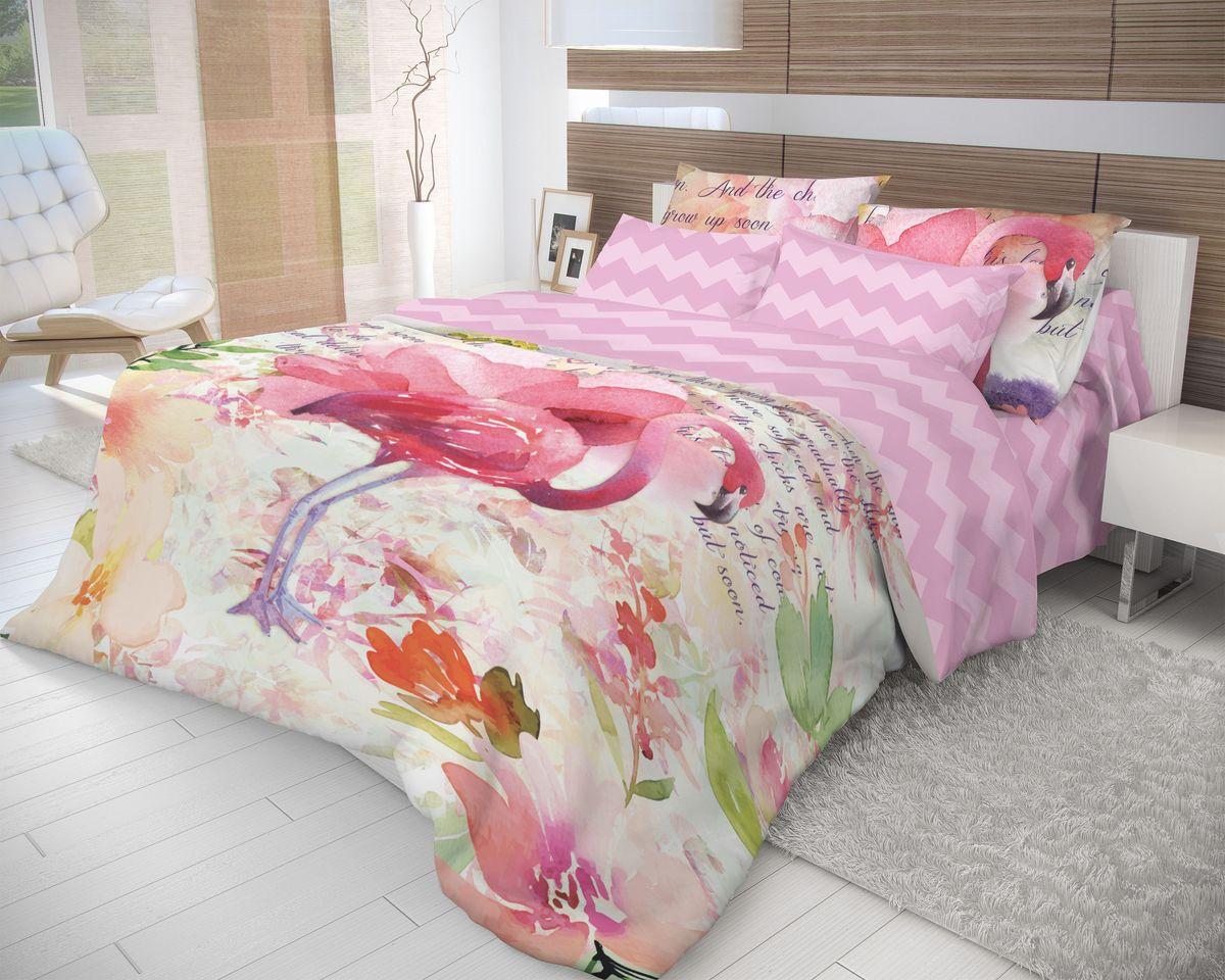 Комплект белья Волшебная ночь Flamingo, 2-спальный с простыней евро, наволочки 70х70, цвет: светло-сиреневый, розовыйS03301004Роскошный комплект постельного белья Волшебная ночь Flamingo выполнен из натурального ранфорса (100% хлопка) и оформлен оригинальным рисунком. Комплект состоит из пододеяльника, простыни и двух наволочек. Ранфорс - это новая современная гипоаллергенная ткань из натуральных хлопковых волокон, которая прекрасно впитывает влагу, очень проста в уходе, а за счет высокой прочности способна выдерживать большое количество стирок. Высочайшее качество материала гарантирует безопасность.