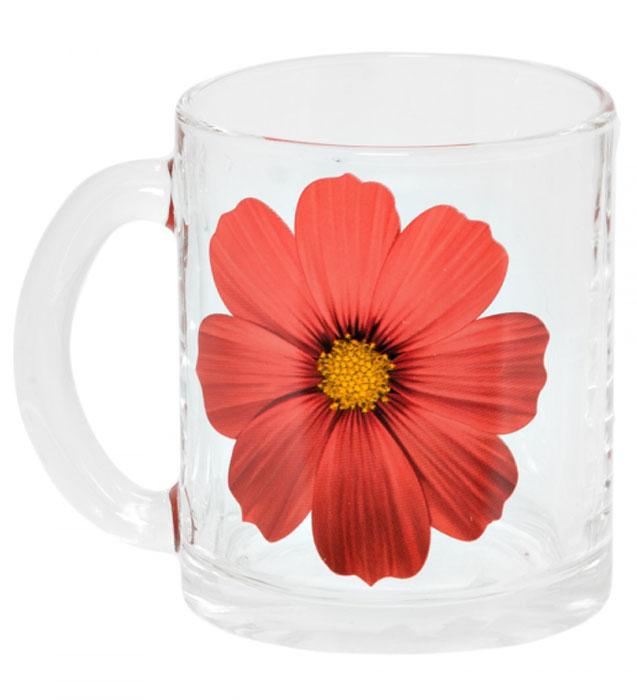 Кружка OSZ Чайная. Космея, 320 мл. 04C1208-KS04C1208-KSКружка OSZ Чайная. Космея изготовлена из прочного, прозрачного стекла и оформлена изображением цветка. Изделие оснащено удобной ручкой и сочетает в себе лаконичный дизайн и функциональность. Кружка OSZ Чайная. Космея не только украсит ваш кухонный стол, но подчеркнет прекрасный вкус хозяйки.