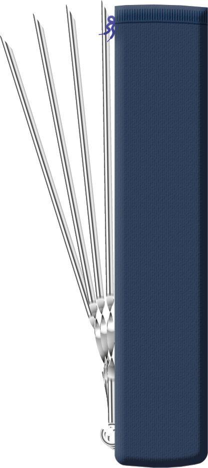Набор угловых шампуров Biostyle, в чехле, 45 см101-304Угловые шампуры идеально подходят для приготовления куриных окорочков и ребрышек, а также кусков мяса и овощей. Изготовлены из пищевой стали. Удобная витая ручка не позволяет шампурам проворачиваться в пазах мангала, что облегчает процесс жарки. Заостренные окончания шампуров позволяют насаживать ломтики легко и аккуратно. Рекомендуемая нагрузка для одного шампура – не более 400 гр. В сумке-чехле удобно хранить и перевозить шампуры.