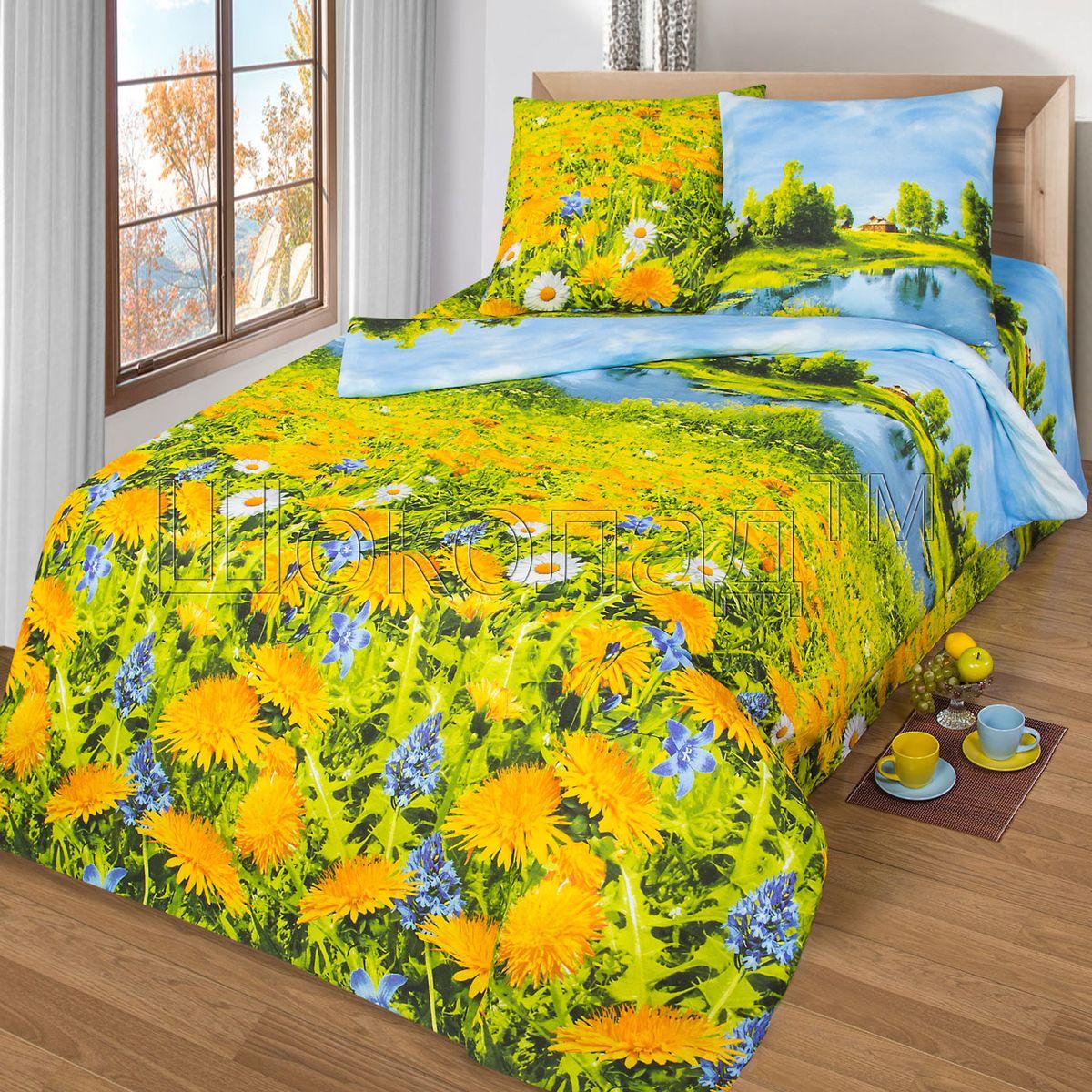 Комплект белья Шоколад Душистый луг, 2-спальный с простыней евро, наволочки 70x70. Б109Б109