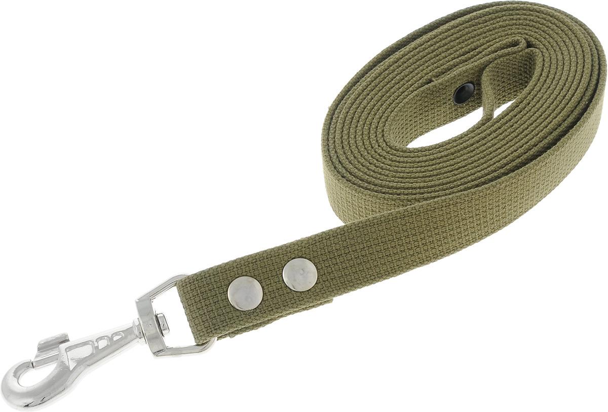 Поводок брезентовый для собак Adel-Dog, ширина 2,5 см, длина 3 м0120710Поводок для собак Adel-Dog, изготовленный из высококачественной брезентовой ткани, снабжен металлическим карабином. Изделие отличается не только исключительной надежностью и удобством, но и привлекательным дизайном.Поводок - необходимый аксессуар для собаки. Ведь в опасных ситуациях именно он способен спасти жизнь вашему любимому питомцу. Иногда нужно ограничивать свободу своего четвероногого друга, чтобы защитить его или себя от неприятностей на прогулке. Длина поводка: 3 м.Ширина поводка: 2,5 см.