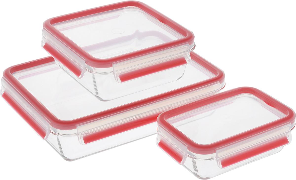 Набор стеклянных контейнеров Emsa Clip&Close Glass, цвет: красный, прозрачный, 3 штVT-1520(SR)Набор Emsa Clip&Close Glass состоит из трех контейнеров разного объема, изготовленных из жаропрочного диамантового стекла, которое не впитывает запахи и не изменяет цвет. Это абсолютно гигиеничный продукт, который подходит для хранения даже детского питания. Изделия снабжены крышками, плотно закрывающимися на 4 защелки. Герметичность достигается за счет специальных силиконовых прослоек, которые позволяют использовать контейнер для хранения не только пищи, но и жидкости. В таком контейнере продукты долгое время сохраняют свою свежесть. Прозрачные стенки позволяют просматривать содержимое. Изделия подходят для домашнего использования, в них удобно запекать, разогревать и хранить пищу. Можно использовать в СВЧ-печах, холодильниках, духовых шкафах, посудомоечных машинах, морозильных камерах. Размер контейнера на 0,5 л: 16 х 11 х 6 см.Размер контейнера на 0,9 л: 16 х 16 х 7 см.Размер контейнера на 2 л: 26 х 19 х 7 см.