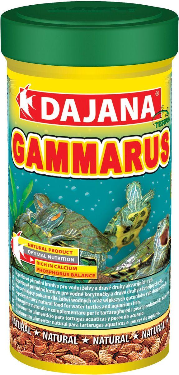 Корм для рыб Dajana Gammarus, 100 мл0120710Природный натуральный корм из чистого, сушеного гаммаруса с высокой питательной ценностью и большим содержанием каротина. Для всех видов аквариумных рыб, водяных черепах и террариумных животных.