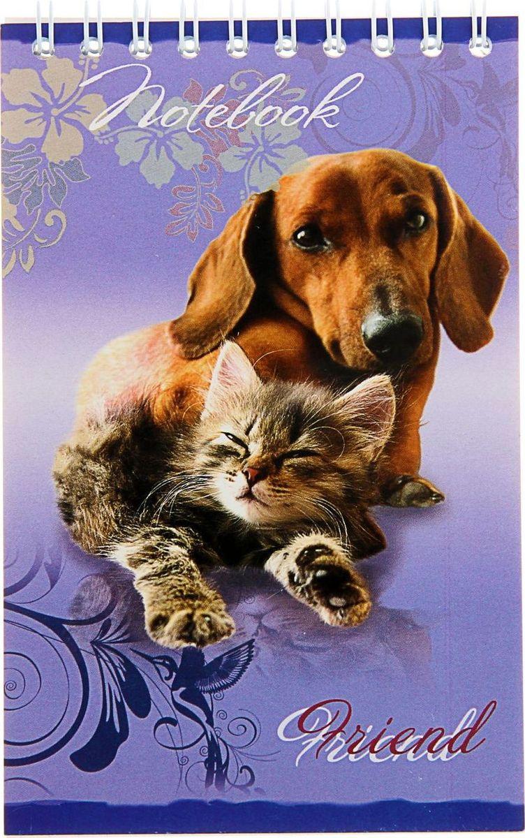 ТетраПром Блокнот Щенки и котята 32 листа1304562