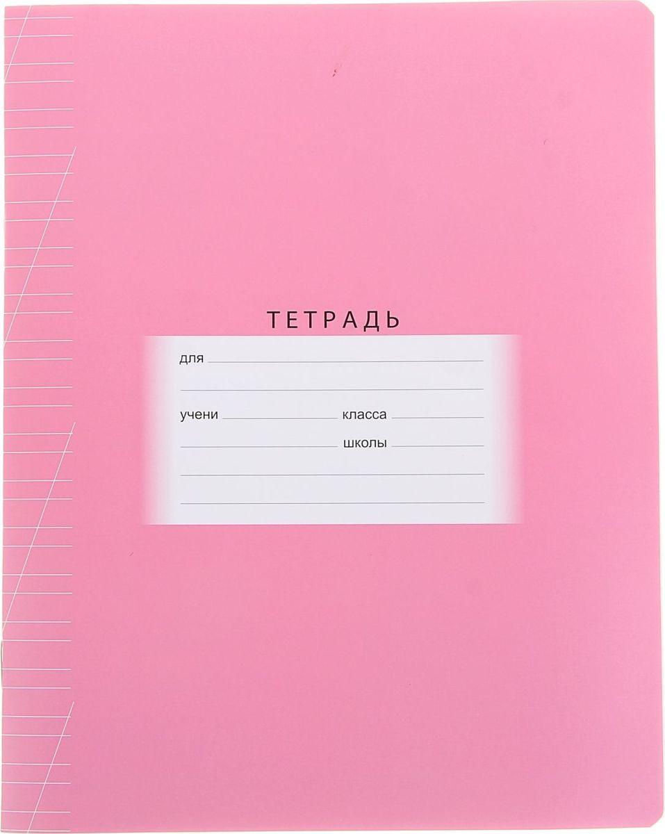 BG Тетрадь Школьная 12 листов в косую линейку цвет розовый1050134Тетрадь 12 листов косая линейка Школьная. Розовая, обложка мелованный картон это очень важная помощница в жизни каждого первоклассника. С ее помощью малыши учатся красиво и аккуратно писать, соблюдая правильный размер и наклон своих первых письменных букв. Тетрадь имеет плотную обложку из мелованного картона, линии хорошо пропечатаны и видны.