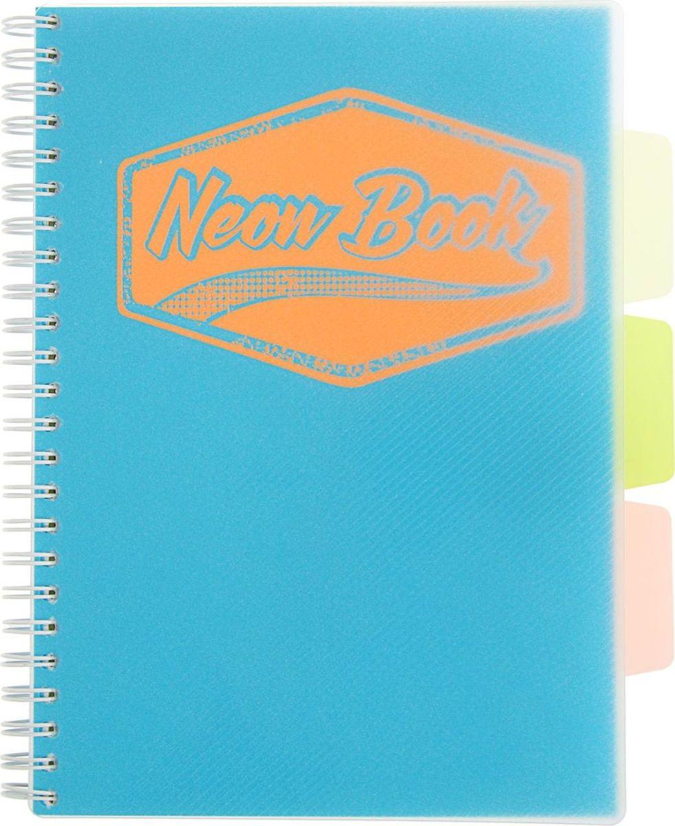 Expert Complete Тетрадь с разделителями Neon Book 120 листов в клетку цвет синий1898211