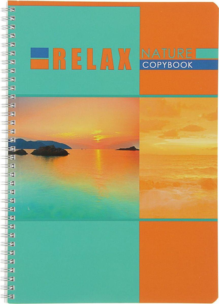 BG Тетрадь Relax-2 96 листов в клетку2304410