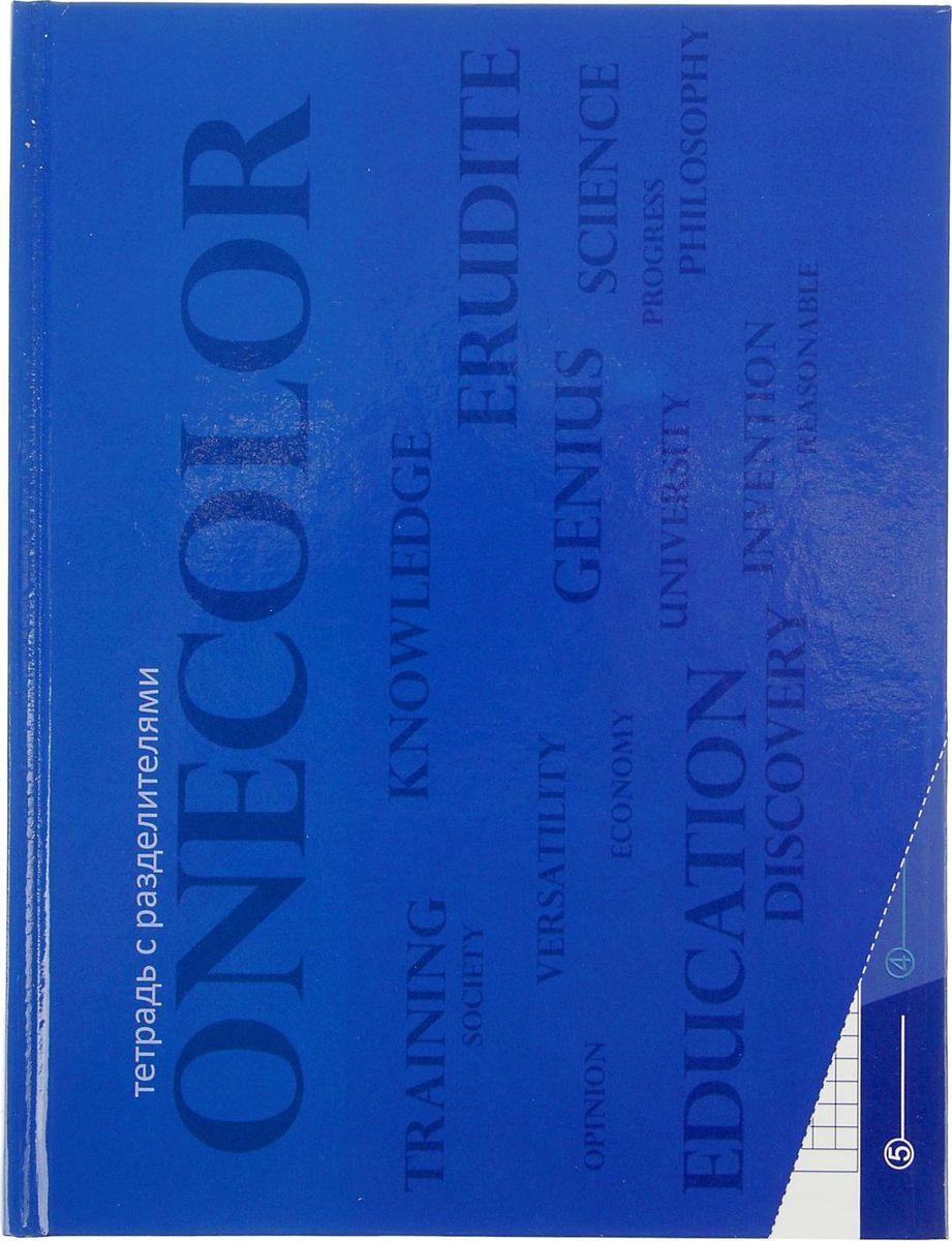 Апплика Тетрадь 80 листов в клетку цвет фиолетовый2346704