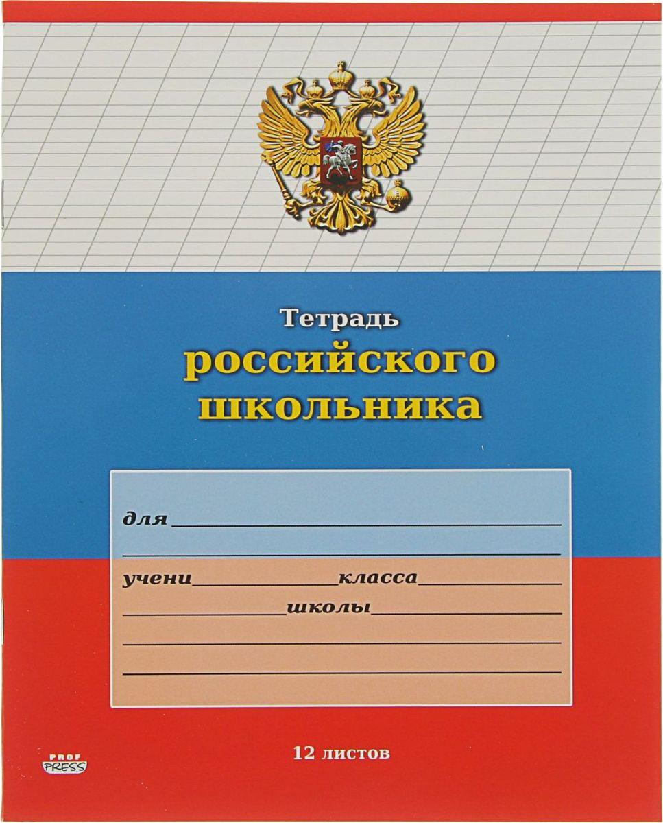 Проф-Пресс Тетрадь Российского школьника-7 12 листов в косую линейку2371723