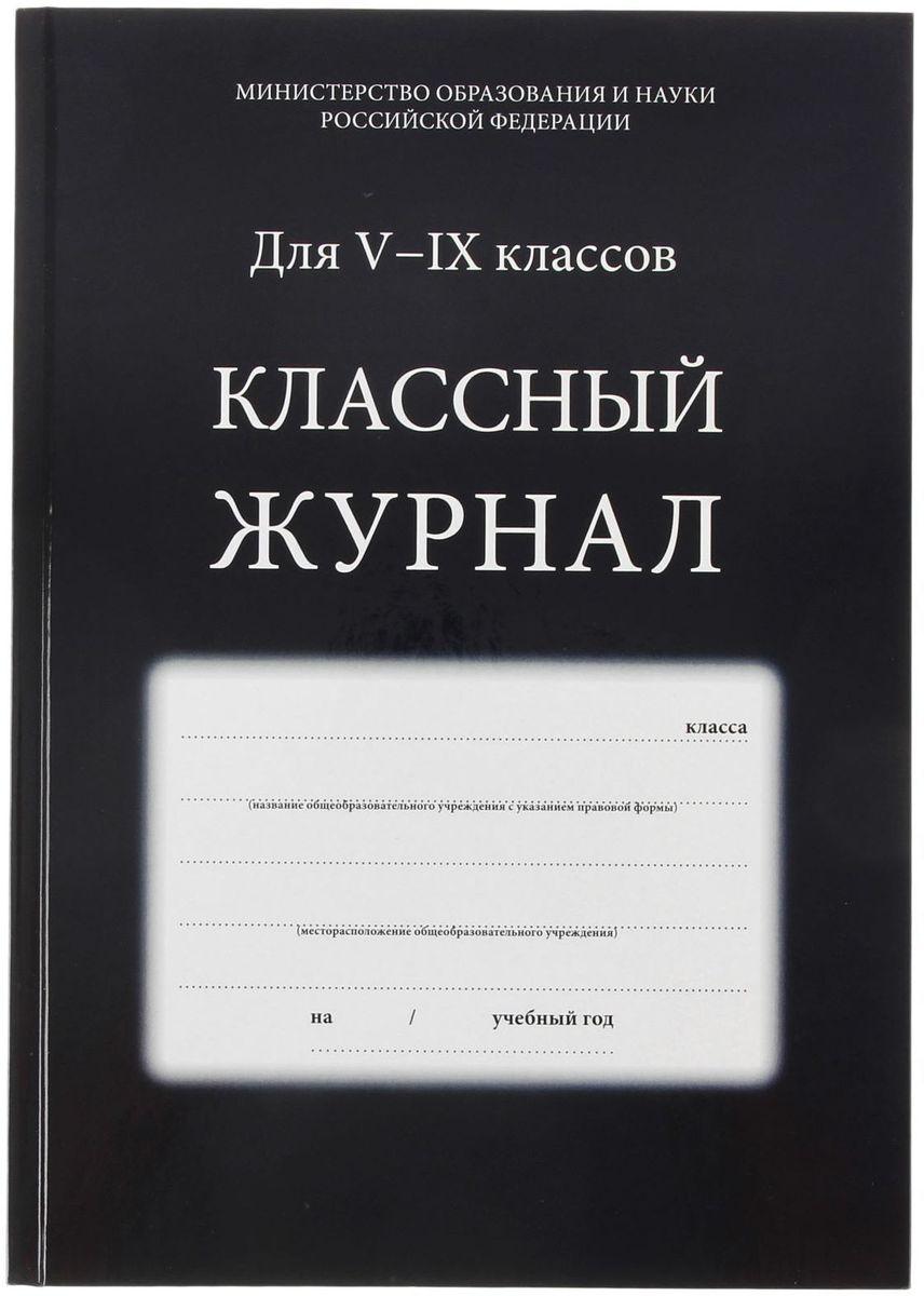 Проф-Пресс Классный журнал для 5-9 классов 84 листа1544499