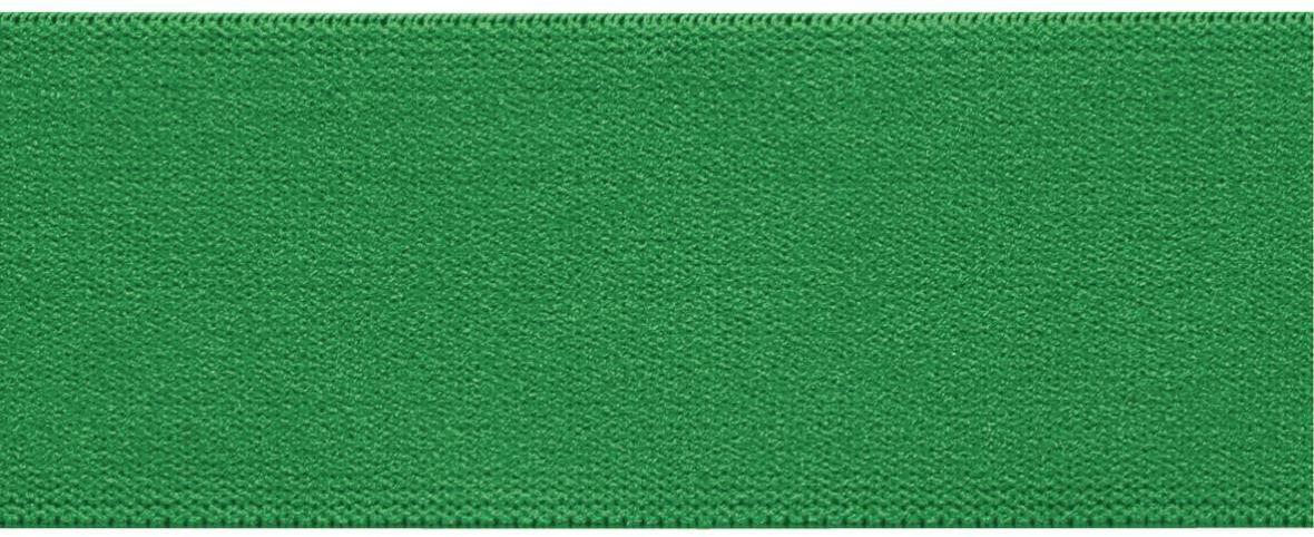 Лента-пояс эластичная Prym, цвет: зеленый, 38 мм, 10 м09840-20.000.00Для пришивания в качестве пояса