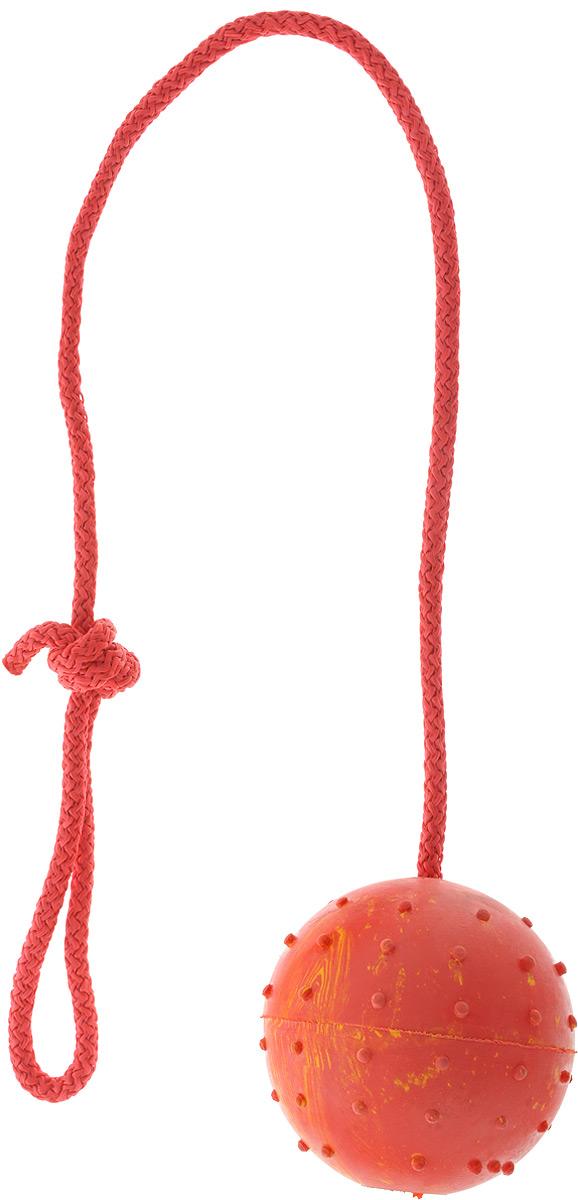 Игрушка для собак Каскад Мяч цельнолитой, на веревке, цвет: красный, желтый, диаметр 7 см0120710Игрушка для собак Каскад Мяч цельнолитой выполнена из прочной резины в форме мяча с мягкими шипами для массажа десен и чистки зубов. Изделие дополнено прочной веревкой, которая послужит ручкой. Такая игрушка порадует вашего любимца, а вам доставит массу приятных эмоций, ведь наблюдать за игрой всегда интересно и приятно. Великолепно подходит для активных и ведущих спортивный образ жизни собак. Игрушка станет незаменимой во время дрессировки собак. Диаметр игрушки: 7 см. Длина игрушки (с учетом веревки): 36 см.
