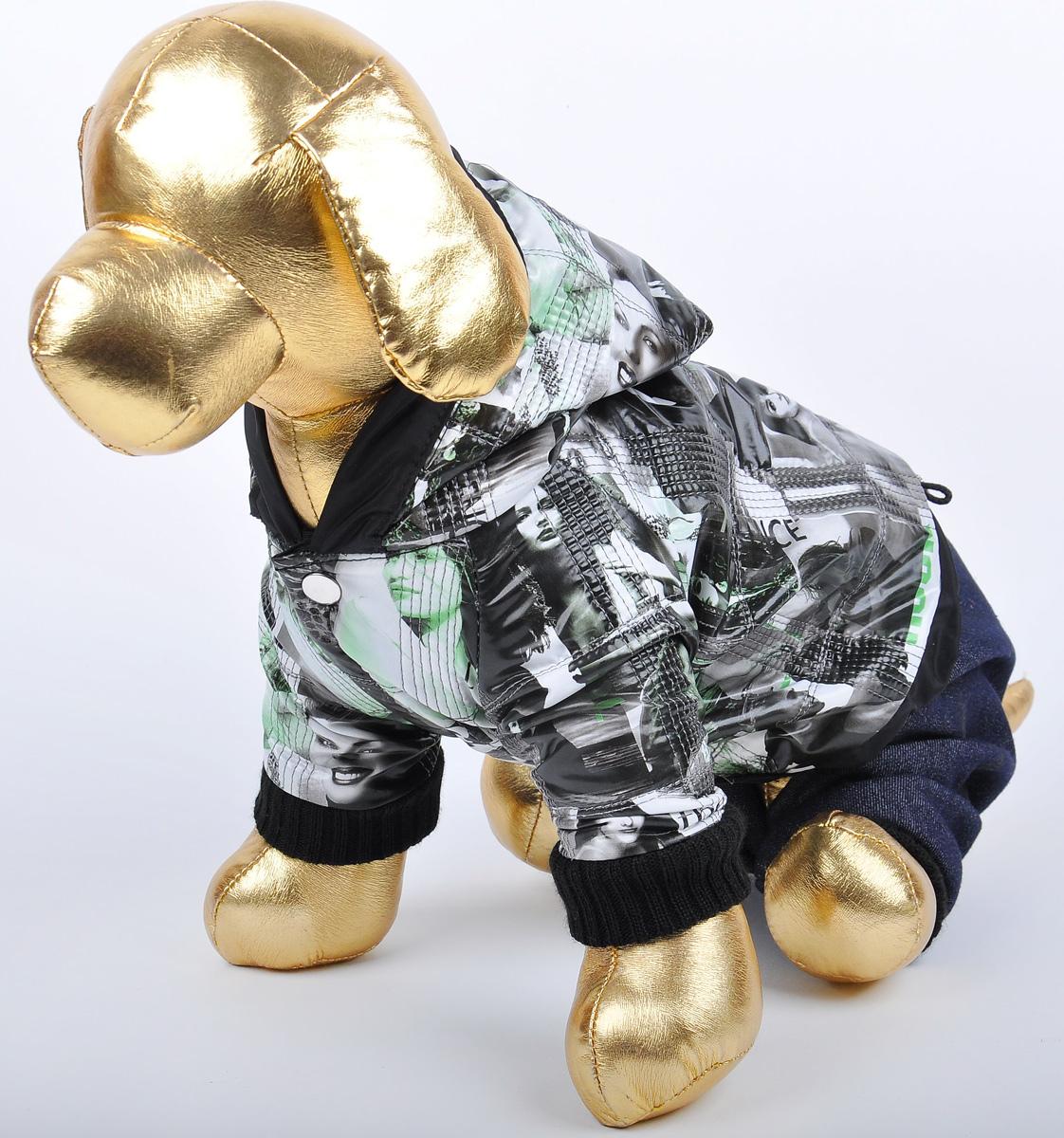 Куртка со штанами для собак GLG Столица. Размер XS0120710Куртка с джинсовыми штанами для собак столица, материал куртка болонья, штаны джинса х/б, размер-XS, длина спины19-21см, объем груди-26-28см.
