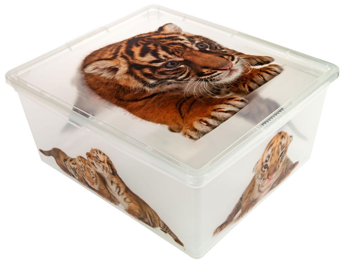 Контейнер для хранения ABM Дикие котята, 18 лUP210DFКонтейнер ABM Дикие котята выполнен из прочного полипропилена, пригодного и для контакта с пищевыми продуктами. Материал безопасен для здоровья, не токсичен, не имеет запаха, не вызывает аллергических реакций. Внешние стенки изделия декорированы изображением тигрят. В нем удобно хранить различные бытовые вещи, позволит сохранить их в порядке и защитит содержимое от пыли и грязи. Контейнер плотно закрывается крышкой.