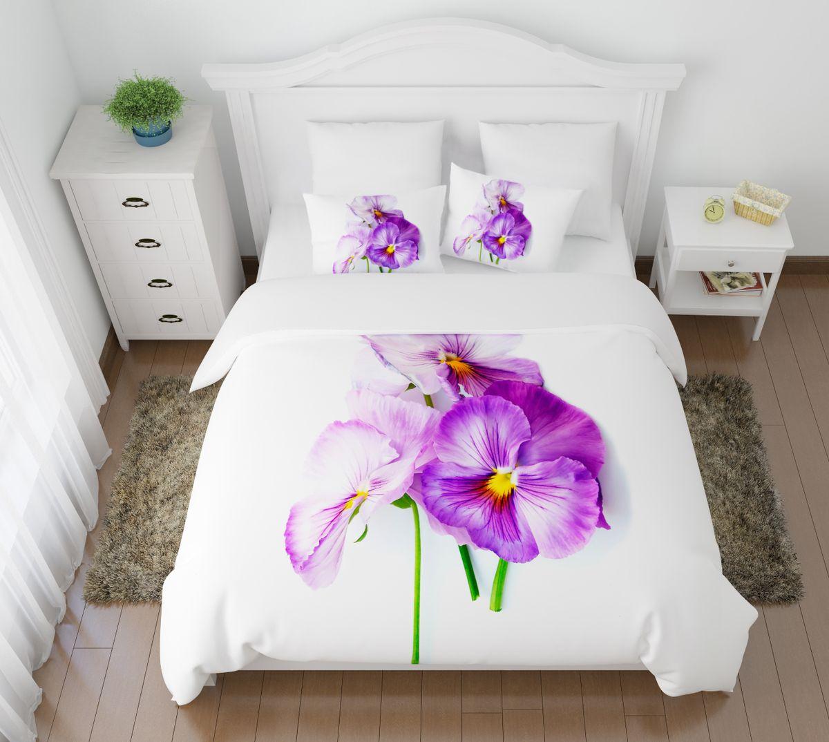 Комплект белья Сирень Виола необыкновенная, 2-спальный, наволочки 50х70S03301004Комплект постельного белья Сирень 2-х спальный выполнен из прочной и мягкой ткани. Четкий и стильный рисунок в сочетании с насыщенными красками делают комплект постельного белья неповторимой изюминкой любого интерьера. Постельное белье идеально подойдет для подарка. Идеальное соотношение смешенной ткани и гипоаллергенных красок это гарантия здорового, спокойного сна. Ткань хорошо впитывает влагу, надолго сохраняет яркость красок. Цвет простыни, пододеяльника, наволочки в комплектации может немного отличаться от представленного на фото.В комплект входят: простыня - 200х220см; пододельяник 175х210 см; наволочка - 50х70х2шт. Постельное белье легко стирать при 30-40 градусах, гладить при 150 градусах, не отбеливать.Рекомендуется перед первым изпользованием постирать.
