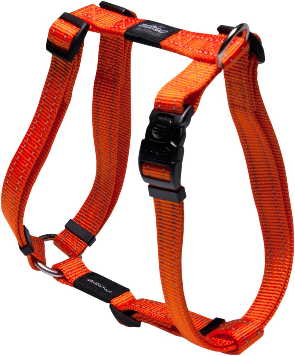 Шлейка для собак Rogz Utility , цвет: оранжевый, ширина 2 см. Размер L0120710Видимость ночью. Светоотражающая нить, вплетенная в нейлоновую ленту - для обеспечения лучшей видимости собаки в темное время суток.Специальная конструкция пряжки Rog Loc - очень крепкая (система Fort Knox). Замок может быть расстегнут только рукой человека.Технология распределения нагрузки позволяет снизить нагрузку на пряжки, изготовленные из титанового пластика, с помощью правильного и разумного расположения грузовых колец, благодаря чему, даже при самых сильных рывках, изделие не рвется и не деформируется.Выполненные специально по заказу ROGZ литые кольца гальванически хромированы, что позволяет избежать коррозии и потускнения изделия. Полотно:нейлоновая тесьма, светоотражающая нить.Пряжки: ацетиловый пластик. Кольца: цинковое литье.
