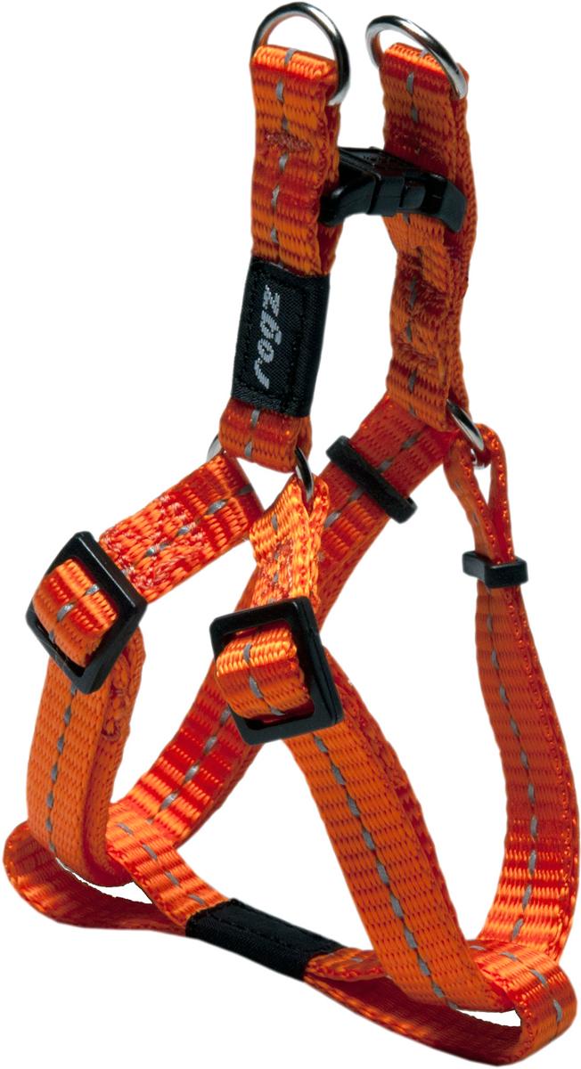 Шлейка разъемная для собак Rogz Utility , цвет: оранжевый, ширина 1,1 см. Размер S0120710Видимость ночью. Светоотражающая нить, вплетенная в нейлоновую ленту для обеспечения лучшей видимости собаки в темное время суток.Специальная конструкция пряжки Rog Loc - очень крепкая (система Fort Knox). Замок может быть расстегнут только рукой человека.Технология распределения нагрузки позволяет снизить нагрузку на пряжки, изготовленные из титанового пластика, с помощью правильного и разумного расположения грузовых колец, благодаря чему, даже при самых сильных рывках, изделие не рвется и не деформируется.Особые контурные пластиковые компоненты.Выполненные специально по заказу ROGZ литые кольца гальванически хромированы, что позволяет избежать коррозии и потускнения изделия. Полотно:нейлоновая тесьма, светоотражающая нить.Пряжки: ацетиловый пластик. Кольца: цинковое литье.