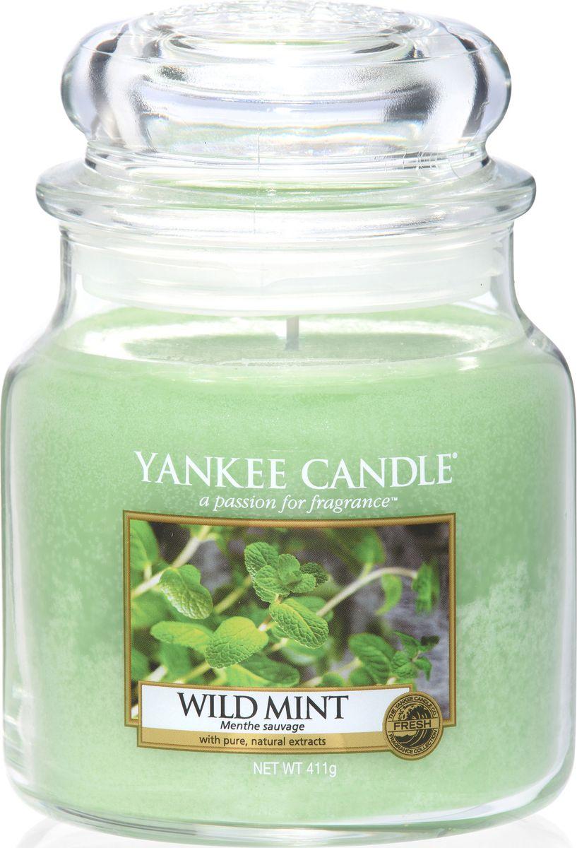 Ароматическая свеча Yankee Candle Дикая мята / Wild Mint, 65-90 чFS-91909Листья дикой мяты - свежий, прохладный, бодрящий аромат.Верхняя нота: Листья Дикой МятыСредняя нота: Свежая МятаБазовая нота: Мускус, Сандаловое Дерево