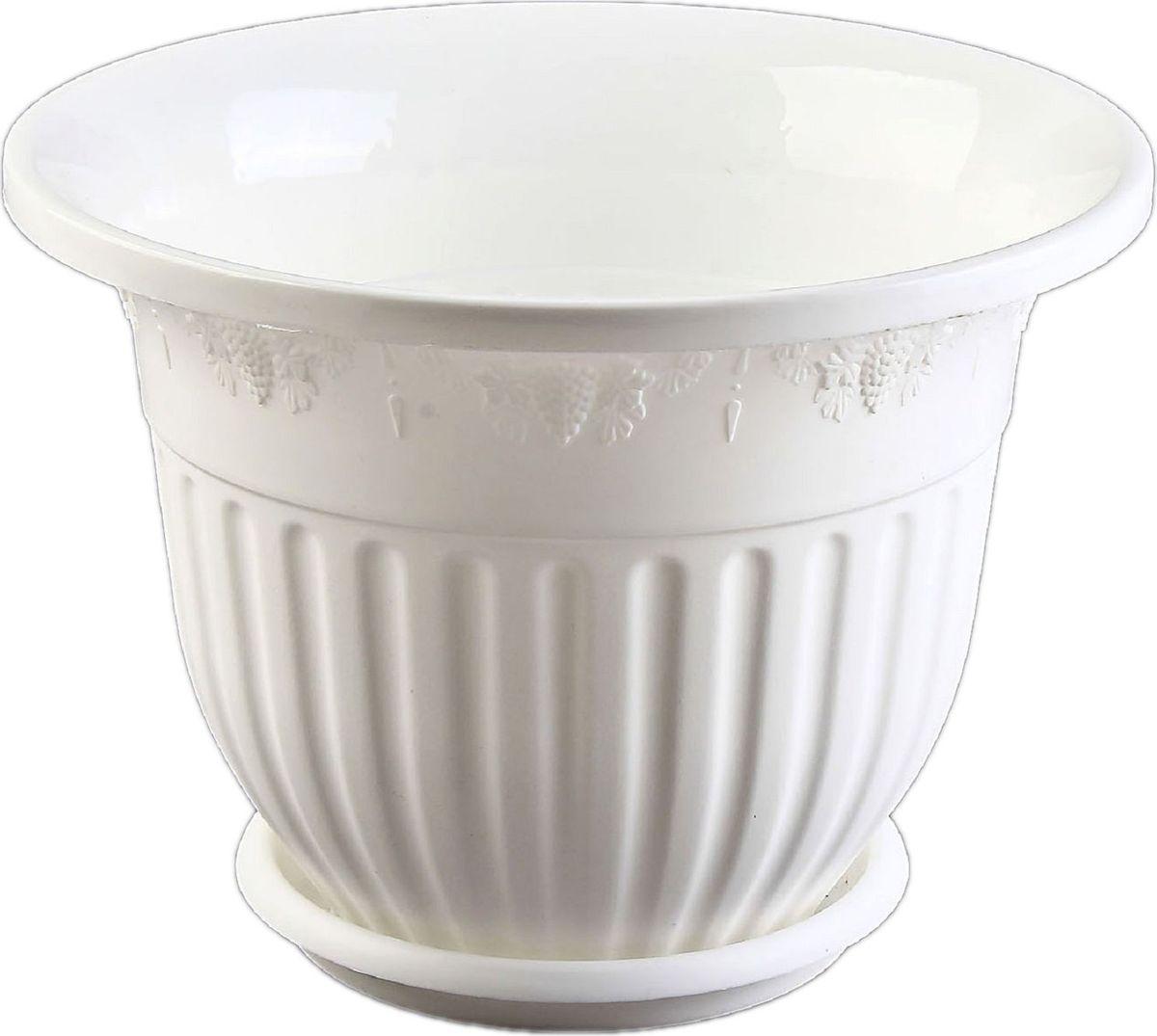 Кашпо Альтернатива Лозанна, с поддоном, цвет: белый, 3 лA6483LM-6WHЛюбой, даже самый современный и продуманный интерьер будет не завершённым без растений. Они не только очищают воздух и насыщают его кислородом, но и заметно украшают окружающее пространство. Такому полезному члену семьи просто необходимо красивое и функциональное кашпо, оригинальный горшок или необычная ваза! Мы предлагаем - Горшок-кашпо 3 л Лозанна, поддон, цвет белый! Оптимальный выбор материала пластмасса! Почему мы так считаем? Малый вес. С лёгкостью переносите горшки и кашпо с места на место, ставьте их на столики или полки, подвешивайте под потолок, не беспокоясь о нагрузке. Простота ухода. Пластиковые изделия не нуждаются в специальных условиях хранения. Их легко чистить достаточно просто сполоснуть тёплой водой. Никаких царапин. Пластиковые кашпо не царапают и не загрязняют поверхности, на которых стоят. Пластик дольше хранит влагу, а значит растение реже нуждается в поливе. Пластмасса не пропускает воздух корневой системе растения не грозят резкие перепады температур. Огромный выбор форм, декора и расцветок вы без труда подберёте что-то, что идеально впишется в уже существующий интерьер. Соблюдая нехитрые правила ухода, вы можете заметно продлить срок службы горшков, вазонов и кашпо из пластика: всегда учитывайте размер кроны и корневой системы растения (при разрастании большое растение способно повредить маленький горшок)берегите изделие от воздействия прямых солнечных лучей, чтобы кашпо и горшки не выцветалидержите кашпо и горшки из пластика подальше от нагревающихся поверхностей. Создавайте прекрасные цветочные композиции, выращивайте рассаду или необычные растения, а низкие цены позволят вам не ограничивать себя в выборе.